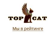 Тема выставки на TOP CAT