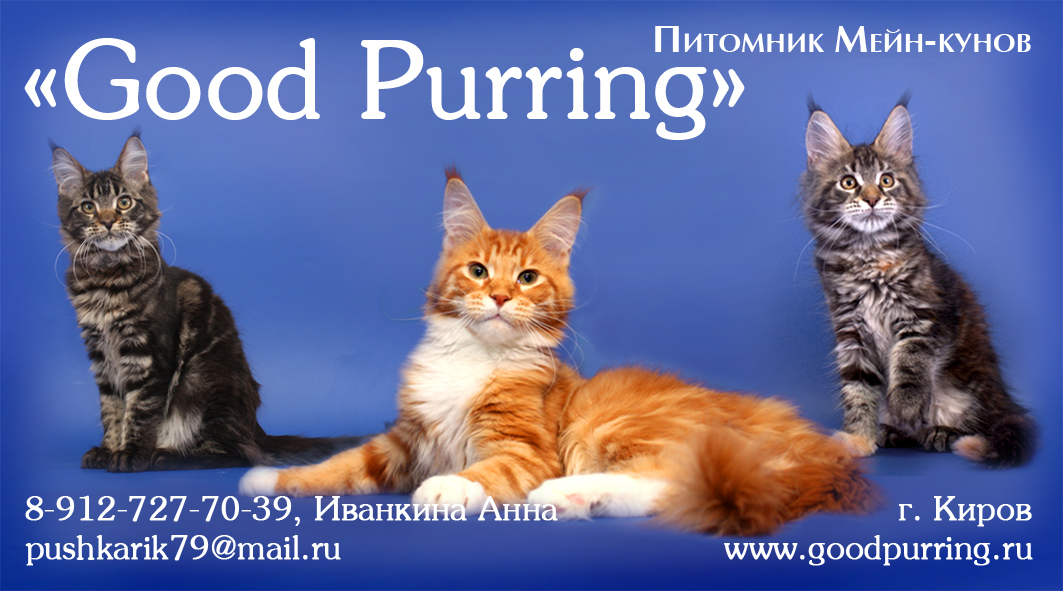 Good Purring